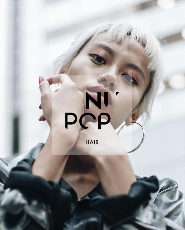 preisliste 2019 nupop head